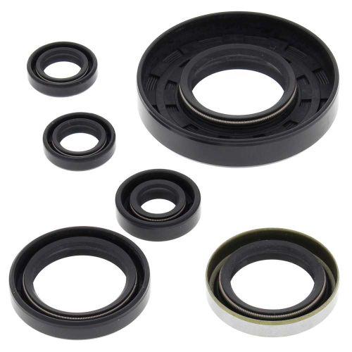 Winderosa Polaris Oil Seal Kit - 822262