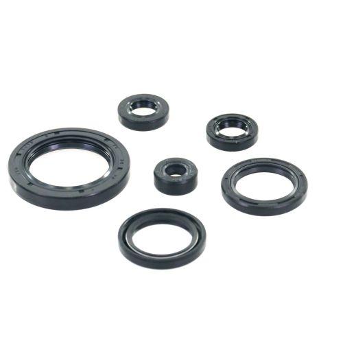 Winderosa Oil Seal Kit - 822978